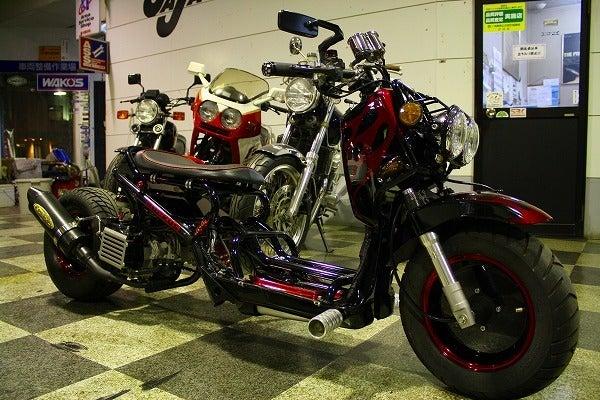 自転車の 博多 自転車 修理 : ... 屋 (有)SBS博多の森 / D.N.K.DIVISION
