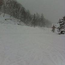 ニセコ スキー