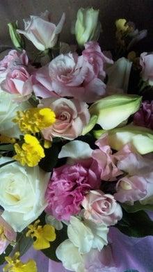 オカメインコのももちゃんと花教室と旅日記-110206_130642.jpg