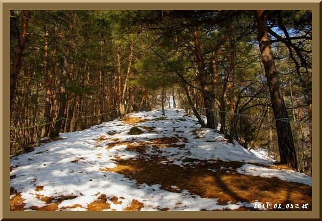 ロフトで綴る山と山スキー-0205_0900