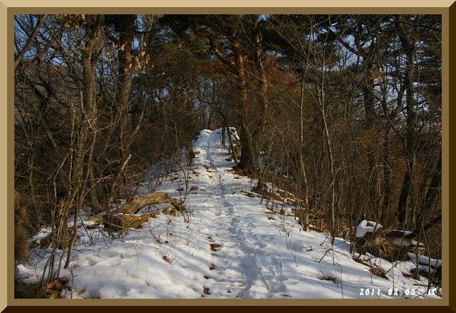 ロフトで綴る山と山スキー-0205_0926