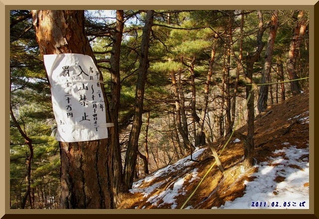 ロフトで綴る山と山スキー-0205_0853