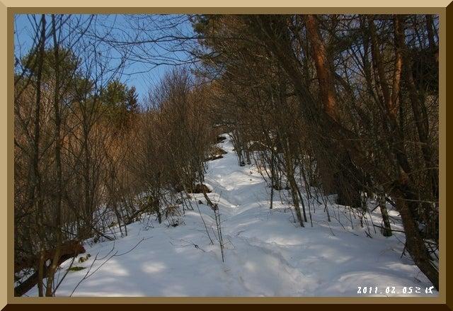 ロフトで綴る山と山スキー-0205_1159