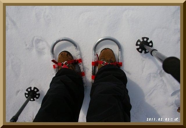 ロフトで綴る山と山スキー-0205_1033