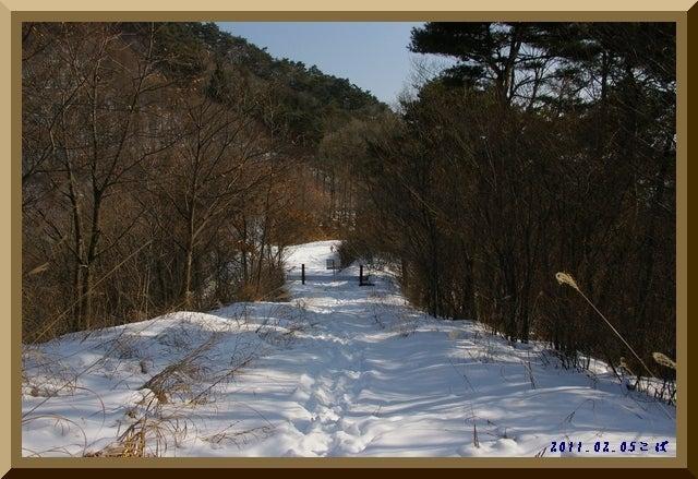 ロフトで綴る山と山スキー-0205_1119