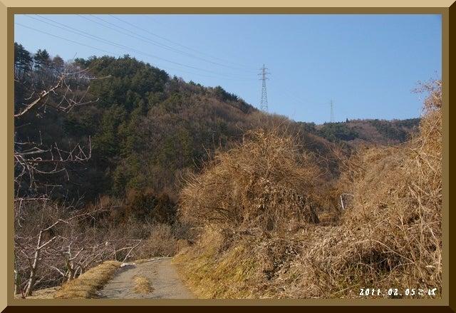 ロフトで綴る山と山スキー-0205_1427