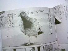 岡田鯛ブログ