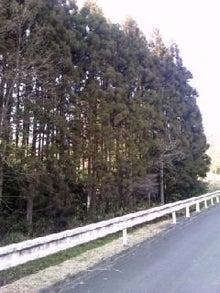 京都tkmのブログ-TS3V00340001.jpg