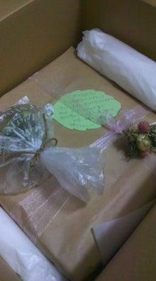 $ベランダのちょこっとガーデニング☆-101124_2007~02.jpg