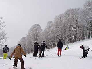 $池の平温泉スキー場ゲレンデレポート-11021202