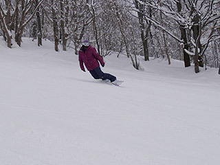 $池の平温泉スキー場ゲレンデレポート-11021203