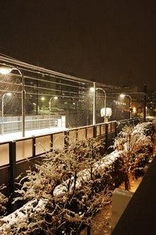 Open!YAMAnDA-駅の大雪