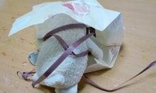 $てぬぐい作家 tenugui chaco のブログ-2/17 小包5