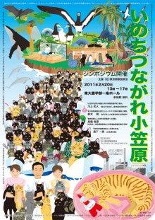 小笠原エコツアー 父島エコツアー         小笠原の旅情報と小笠原の自然を紹介します-シンポジウム