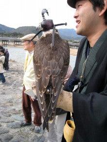 京都嵐山日和-0219_2