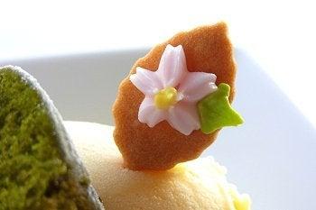 ミュージアムレストラン花の妖精blog-2011 桜スイーツ 6
