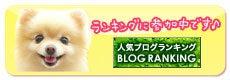 こぐまなポメとかぴばらチワワ-人気ブログランキングへ