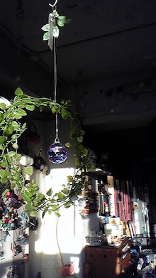 cafena.のブログ-DVC00286.jpg