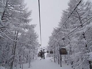 $池の平温泉スキー場ゲレンデレポート-11022601