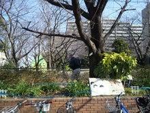 和光市長 松本たけひろの「持続可能な改革」日記-本町小