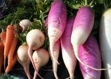 $東京農楽(とうきょうのら)生活のブログ-DSC_0332-1.jpg