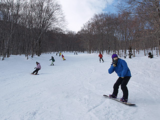 $池の平温泉スキー場ゲレンデレポート-11022703