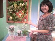 アナウンサーでセラピスト yukie の smily days                   ~周南市アロマのお店 Aroma drops~ -2011022816240000.jpg