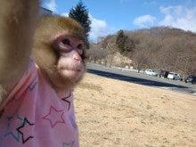 伊香保システィーナではたらくお猿の館長ブログ
