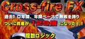 為替 夢子のブログ-crossfire
