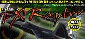 為替 夢子のブログ-raptor