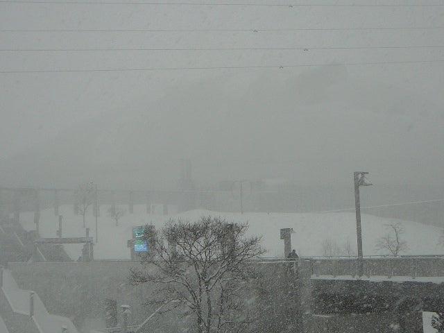 「試される大地北海道」を応援するBlog