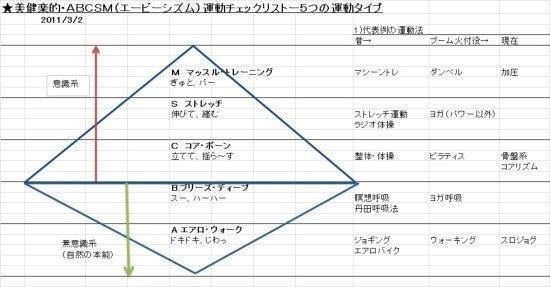 20110303-美健楽ABCSM運動チェックリスト.jpg