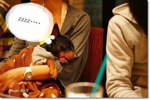 momo☆LOCOときどき姫の気まぐれ日記