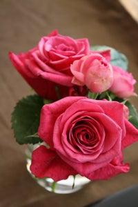 $フルーデリー・スタッフのブログ-roseforparty