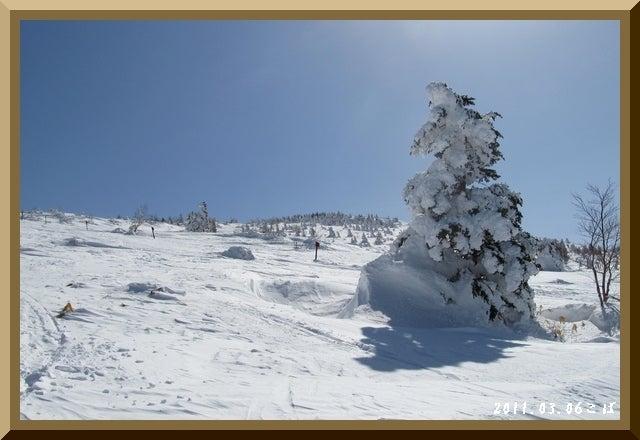 ロフトで綴る山と山スキー-0306_1018