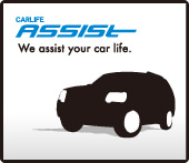 CARLIFE ASSIST