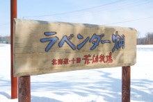 ゆったんの厳選まるごと北海道♪-花畑をたくさん作りたかったらしいですが・・・