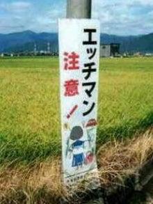 榊原洋一オフィシャルブログ「馬ひとすじ」Powered by Ameba-image007.jpg