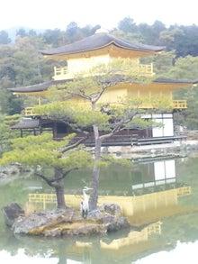 京都いいトコ 素敵観光 -110312_121621.jpg