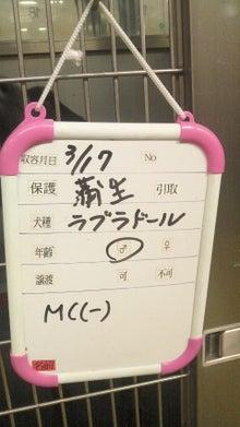 福のボンボン日記-2011031813060001.jpg