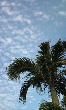 うつなので宮古島に移住しました-100501_0648~01.jpg
