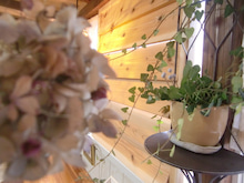 $Cafe 陶花のブログ