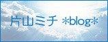 片山 ミチ *blog*