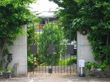 Vintage & Retro Mansion Library -泰山館6