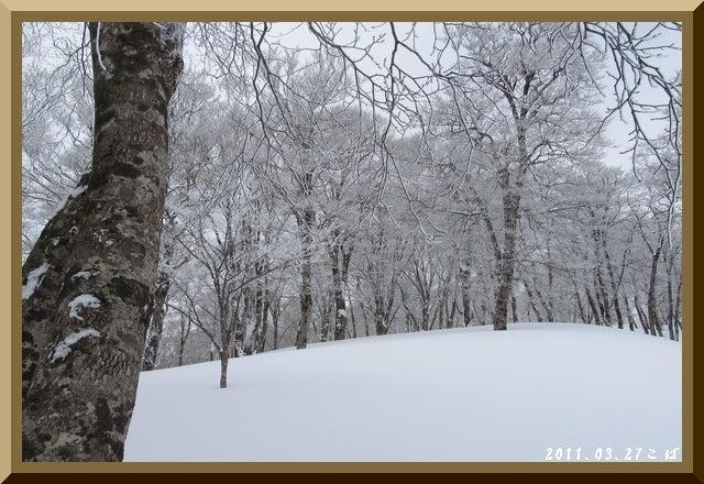 ロフトで綴る山と山スキー-0327_1054