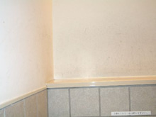$トイレで成幸プロジェクト-110327-3