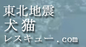 $eikoのブログ