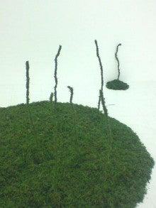 $PLANTS-ART+++植物とのコト