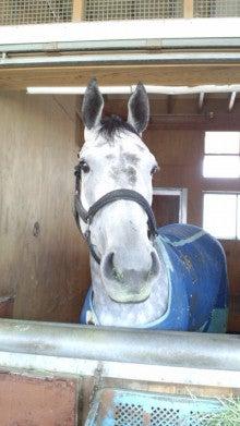 藤岡佑介 オフィシャルブログ 「馬に願いを」 Powered by Ameba-110329_072912.jpg