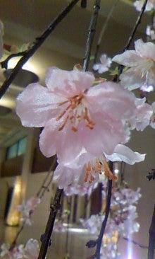中澤裕子オフィシャルブログ「NakazaWorld」powered by Ameba-110314_1723~01.jpg